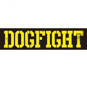 18.1.6dogfight
