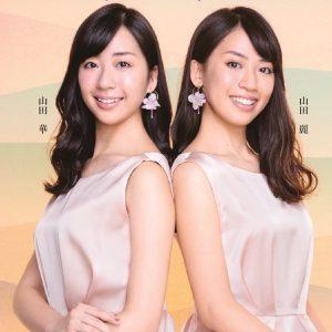 20.3.29 yamada-simai-top