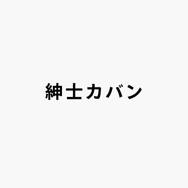 mens_bag