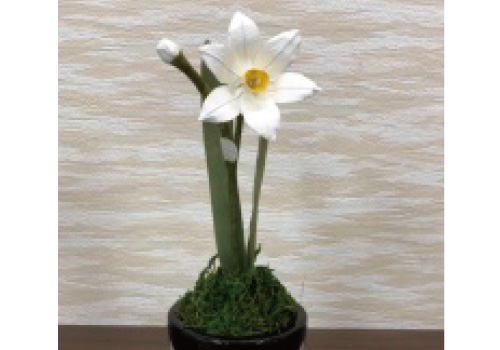 Bloom craft <narcissus> of Japanese paper